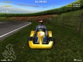 M. Schumacher Racing World Kart 2002